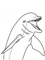 raskraska-delfin-7