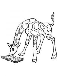 raskraska-giraffe-10