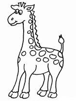 raskraska-giraffe-4