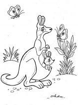 raskraska-kenguru-6