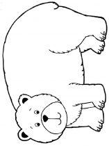 raskraska-medved-11