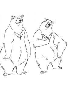 raskraska-medved-2