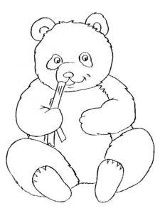 raskraska-medved-21
