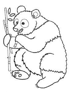 raskraska-medved-22