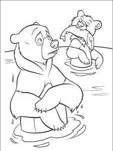 raskraska-medved-5