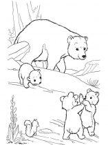 raskraska-medved-6