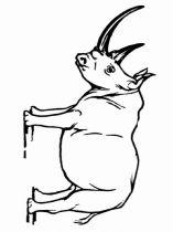 raskraska-nosorog-12