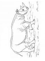 raskraska-nosorog-7