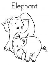 raskraska-slon-1