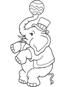 raskraska-slon-12