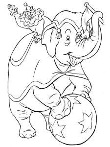 raskraska-slon-19