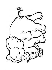 raskraska-slon-21