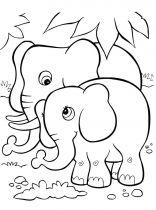 raskraska-slon-8