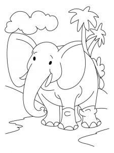 raskraska-slon-9