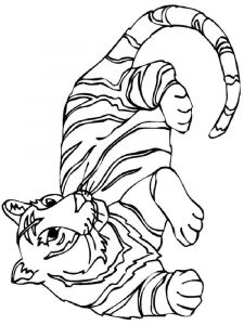 raskraska-tigr-17