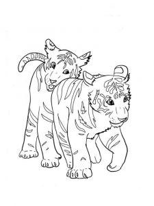 raskraska-tigr-7