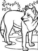 raskraska-volk-10