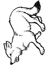 raskraska-volk-7