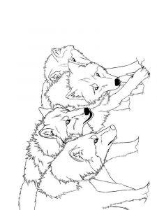 raskraska-volk-8