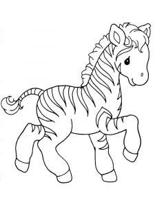 raskraska-zebra-3