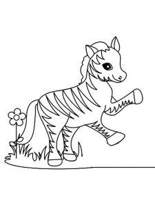 raskraska-zebra-4