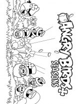 raskraski-angry-birds-13