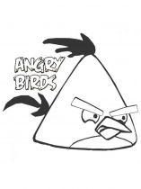 raskraski-angry-birds-22
