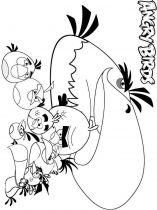 raskraski-angry-birds-9