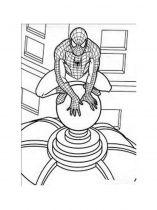 raskraski-dlya-malchikov-chelovek-pauk-spiderman-6