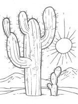 raskraski-cvety-kaktus-3