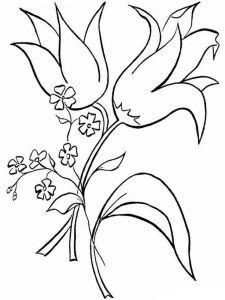raskraski-cvety-kolokolchik-10