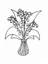 raskraski-cvety-kolokolchik-4