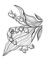 raskraski-cvety-kolokolchik-8