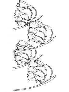 raskraski-cvety-landish-13