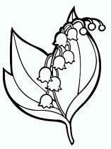 raskraski-cvety-landish-4