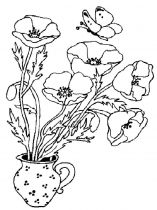 raskraski-cvety-mak-4