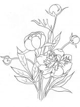 raskraski-cvety-pion-10