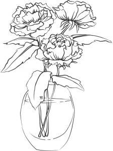 raskraski-cvety-pion-12