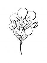 raskraski-cvety-romashki-11