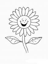 raskraski-cvety-romashki-13