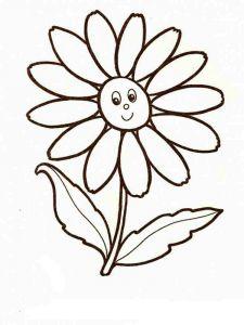 raskraski-cvety-romashki-8
