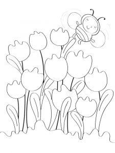 raskraski-cvety-tulpan-15