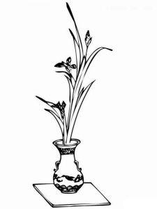 raskraski-cvety-v-vase-9