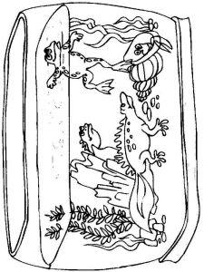 raskraski-dlja-detei-akvarium-6