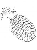 raskraski-frukty-ananas-13