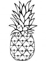 raskraski-frukty-ananas-9