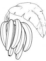 raskraski-frukty-banan-8