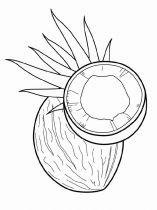 raskraski-frukty-kokos-9