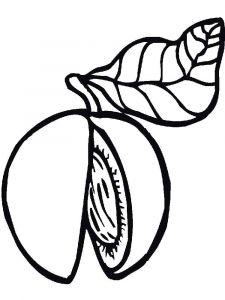 raskraski-frukty-persik-12