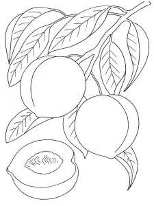 raskraski-frukty-persik-2